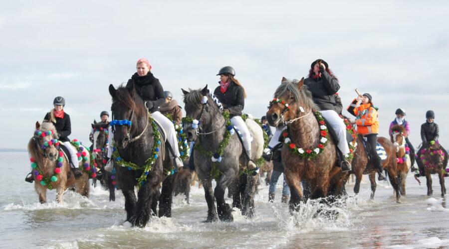 Traditional event Straô in Schouwen-Duiveland, a sustainable destination