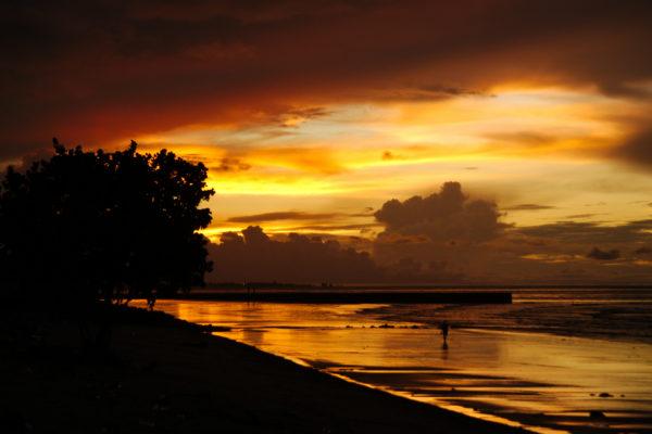 Guyana Ecotravel