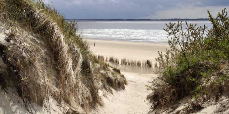Path to the sea through the dunes in Westvoorne, a sustainable destination