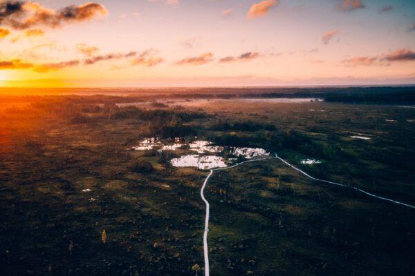 Estonia (2)